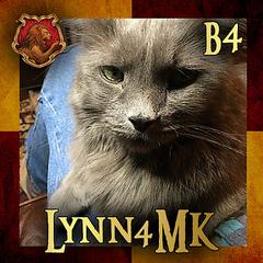 Lynn4MK
